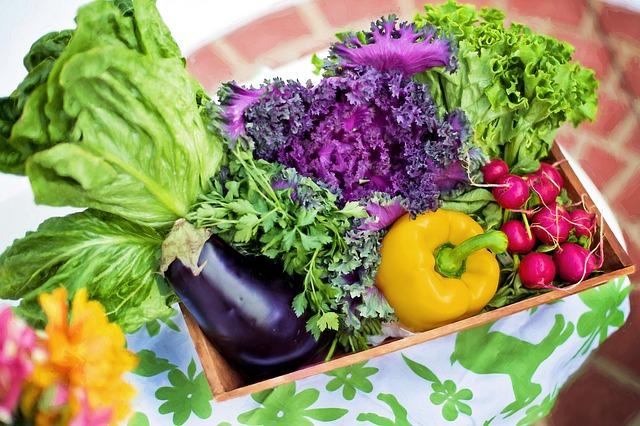 sklizená zelenina
