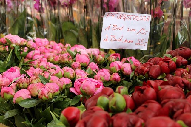 cena květin